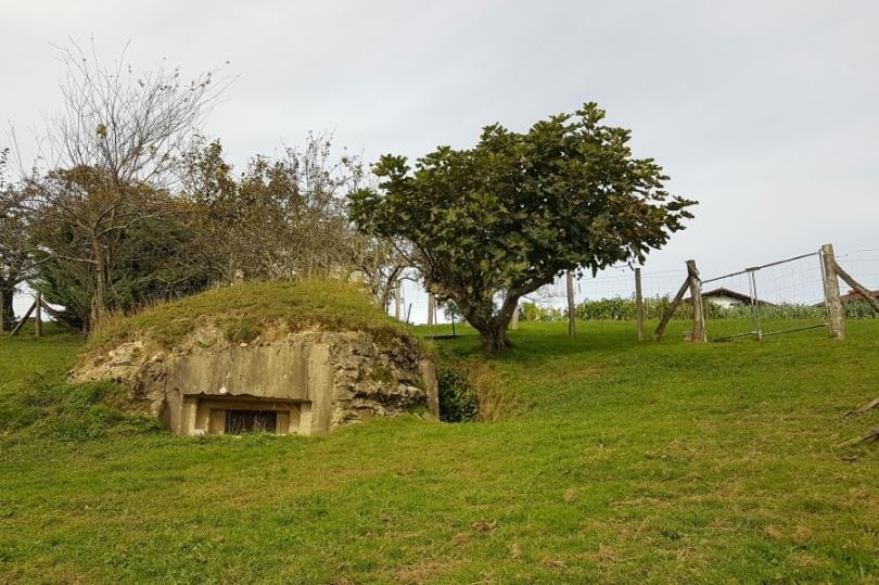 Bunker bat Arkollan