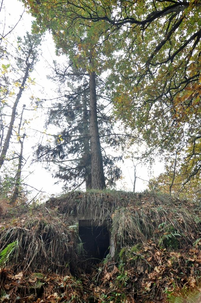 Bunker situado junto al Calvario, en la subida a Gudalupe